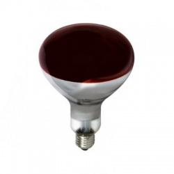 125W E27 žiarovka, červená