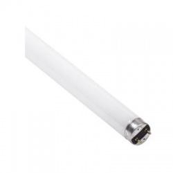 15W/075 T8 žiarivková trubica, osvetlenie pekárenských výrobkov a syrov