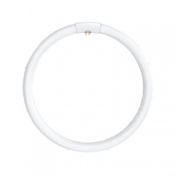 LC 40W T5/840 G10q kruhová žiarivka