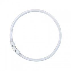 LUMILUX LED T5 FC 55W/830 2G13, LED žiarovka